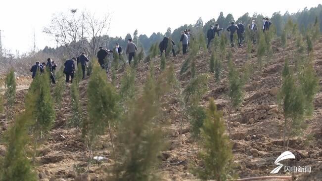 """69秒丨计划11个矿坑全部绿化!潍坊昌乐让陡坡峭壁变成""""绿色家园"""""""
