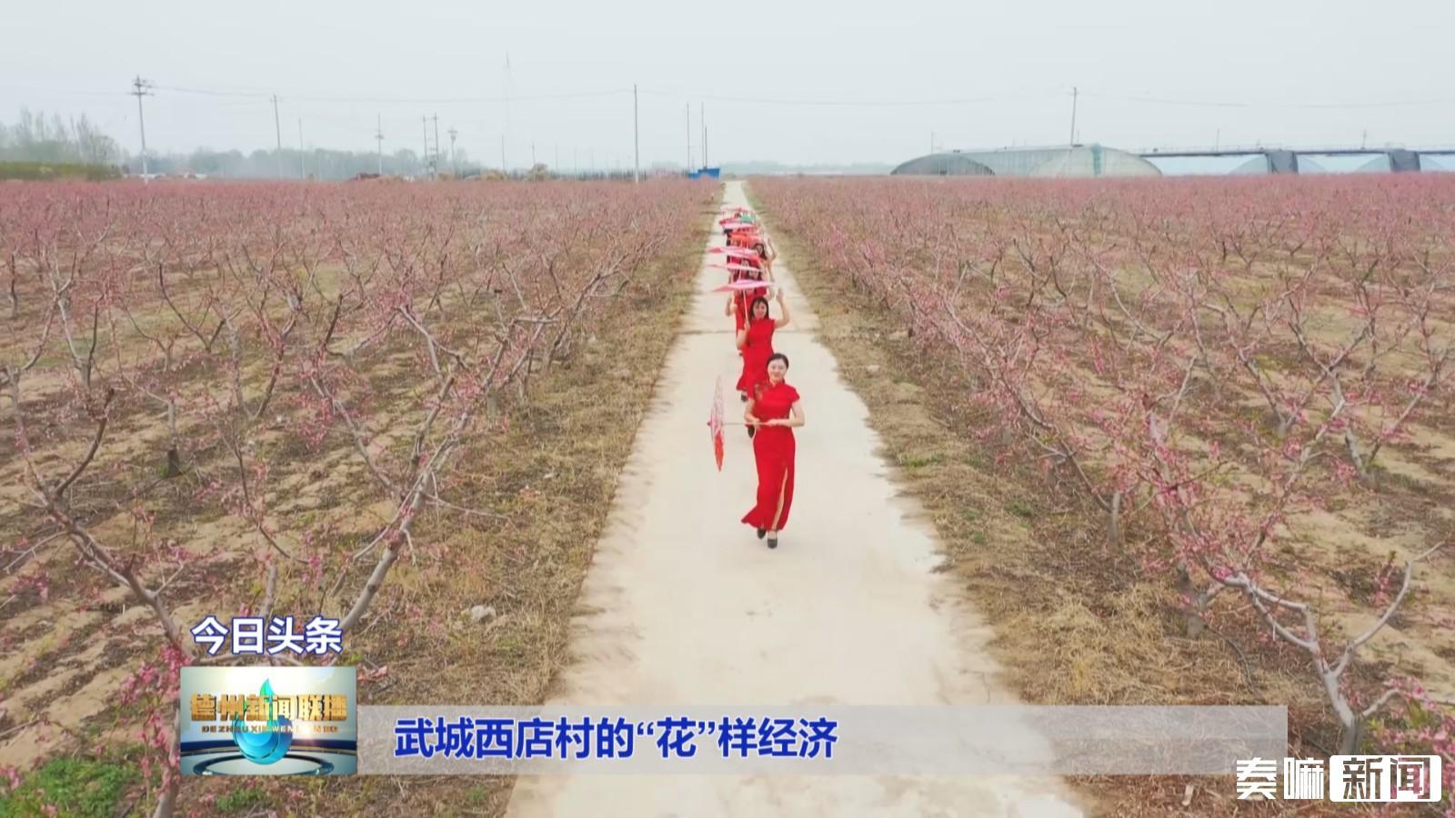 """武城西店村的""""花""""样经济222"""