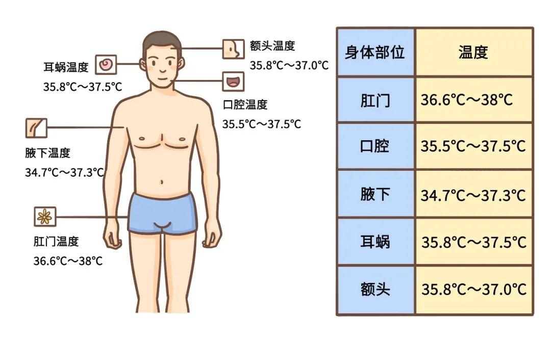差 体温 左右 微熱、微熱と気軽に言うけど、何℃以上なら微熱なの?|院長ブログ|五本木クリニック